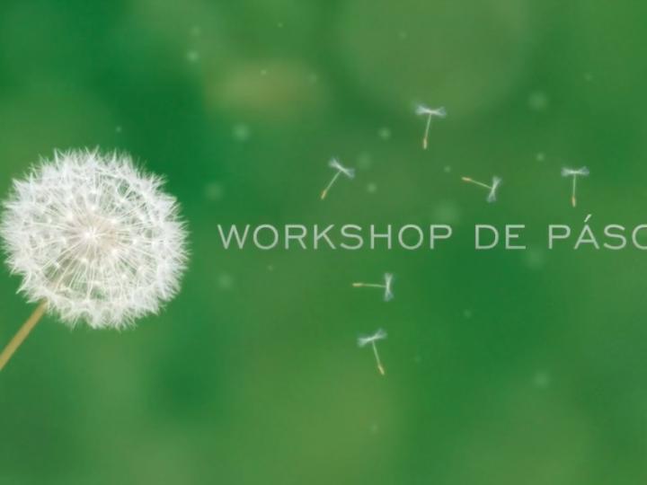 Mais um Workshop que a Blauss Maison participa…
